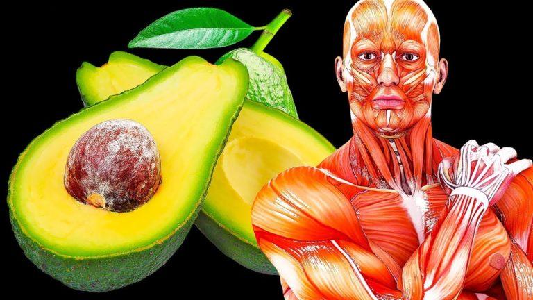 Rahsia dan khasiat Avokado. Apa akan terjadi jika kita makan ia setiap hari?